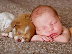Little brown puppy sleeping with a baby.. Click the pic for more awww
