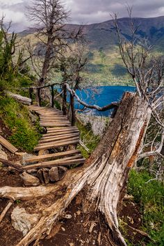 Desde el balcón del Lago Gutierrez Bariloche,  Argentina