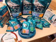 Day by day: PURINA ONE® BIFENSIS - pentru pisicuță sănătoase și frumoase Omega 3, Water Bottle, Drinks, Day, Beverages, Water Flask, Drink, Beverage, Drinking