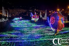 Why Medellí­n, Colombia is one of the top places in the world to see Christmas lights and other things to do during your visit. Christmas Light Displays, Christmas Lights, Top Place, La Jolla, Places To See, Travel Inspiration, Things To Do, Fair Grounds, World