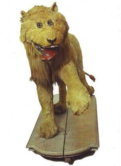 """In 1731, King Frederick I of Sweden gave a lion he had killed to a taxidermist who had never seen a lion before. This was the result. - It's called """"The Lion of Gripsholm Castle"""", but I like to call it """"The King of the Bungle""""."""
