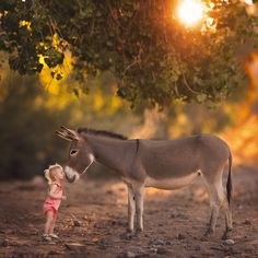 An Unexpected Friendship by Lisa Holloway