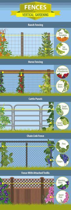 Fencing for vertical gardens