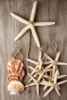 Starfish Christmas Ornaments! Discover the best nautical Christmas ornaments you will love during your beach holiday season. We love beach holiday decor, especially Christmas tree ornaments.