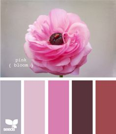 Pink Bloom colors. Love this. It should be an eyeshadow palette