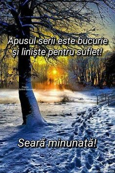 Bună seara! Happy New Year 2020, Months In A Year, Motto, Good Night, Places To Visit, Winter, Movie Posters, Beauty, Rome