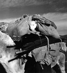 rest the lamb. france. 1958. © Robert Doisneau / Rapho