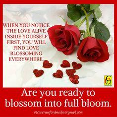#blossom #infullbloom