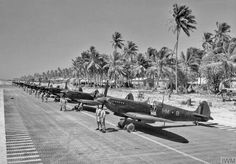Spitfire Mk VIIIs and personnel of Squadron RAF lined up on a recently-laid PSP airstrip on Brown's West Island, Cocos Islands, in the Indian Ocean. Aircraft Photos, Ww2 Aircraft, Fighter Aircraft, Military Aircraft, Spitfire Supermarine, Cocos Island, The Spitfires, Ww2 Pictures, Ww2 Planes