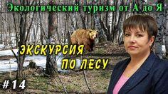 Экологический туризм от А до Я №14. Весенний лес