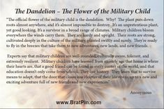 """There are elements, both within the military and the civilian communities, who object to the term """"Brat"""" used in the context with military kids. Description from lonelypilotbob.com. I searched for this on bing.com/images"""