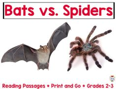 Bats and Spiders Reading Passages - Engage your students with fun learning! This unit will save you a ton of planning time and allow your students to have an engaging learning experience. All you have to do is print and teach. No need to hunt for reading material that aligns with standards.