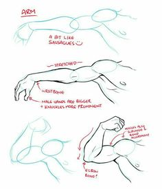 best drawing tips, disney drawings, drawing poses of techniques, great examples of drawing tutorial. Anatomy Sketches, Anatomy Drawing, Anatomy Art, Art Drawings Sketches, Human Anatomy, Arm Anatomy, How To Draw Anatomy, Face Drawings, Body Anatomy