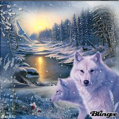 ShapeShifter Seduction: Winter Solstice Howls and Yowls