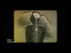 Russell Foster es un neurocientífico circadiano: Estudia los patrones de sueño del cerebro. Y se pregunta: ¿Qué sabemos sobre el sueño? Para ser algo que hac...