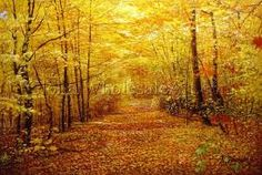 awesome fall foilage - Google Search