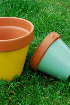 Decoration, Garden Pots, Planter Pots, Green, Change, Gardens, Backyard Farming, Earth, Paint
