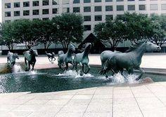"""""""Mustangi"""" z Las Colinas, Teksas, USA Roberta Glena"""