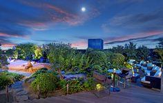 地上50mのラグジュアリーな夏の社交場セントレジス ビアガーデンがオープン