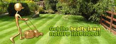 Slide One Lawn, Nature, Naturaleza, Outdoors, Mother Nature, Grass, Natural