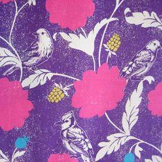 Echino Dahlia Violet