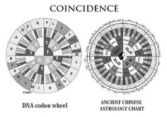 Chinese Astrology Chart, Planetary Symbols, Astrology Zodiac, Coincidences, Geometry