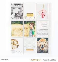 paislee press creative team inspiration | Summer Vibes