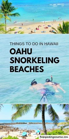 Travel Hawaii vacation ideas Best snorkeling spots in Oahu Best Oahu snorkeling beaches Best things to do on Oahu Best places to visit on Oahu itinerary Waikiki Honolulu. Vacation Ideas, Oahu Vacation, Honeymoon Ideas, Hawaii Travel, Travel Usa, Beach Travel, Travel Tips, Travel Ideas, Travel Europe