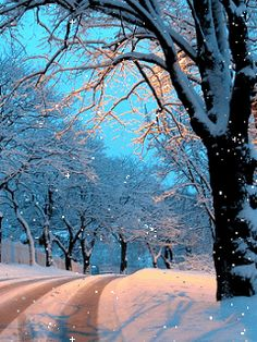 Snow, Winter download Free Animations for mobile