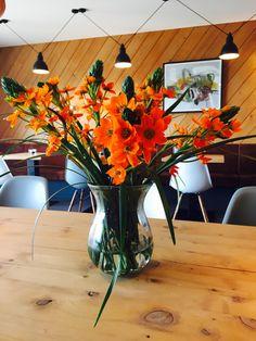 #garberhof #frühling #ornithogalum #schönenfrühlingstag Table Decorations, Travel, Furniture, Home Decor, Destinations, Traveling, Viajes, Interior Design, Home Interior Design