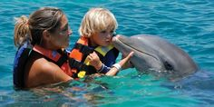 Dolphin Push, Pull & Swim At Chankanaab With Lunch in Cozumel, Mexico