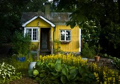 tiny house color matches the flowers  This looks a lot like the non-cob version of the house I designed for my backyard. @Virginia Samuelson