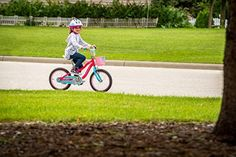 Schwinn Elm Girls Bike for Toddlers and Kids - BikeAddicts Best Kids Bike, Female Cyclist, Bicycle Accessories, Bike Parts, Fixed Gear, Cycling Gear, Bike Life, Bmx, Cool Kids