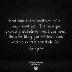 Gratitude is the healthiest of all human emotions. The more you express gratitude for what you have, the more likely you will have even more to express gratitude for. Gratitude Changes Everything, Motivational Quotes, Inspirational Quotes, Best Quotes, Awesome Quotes, Gratitude Quotes, Human Emotions, Speak The Truth, Spiritual Growth