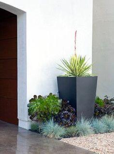 Modern San Francisco Living - modern - landscape - san francisco - Boxleaf Design #modernyardcolour