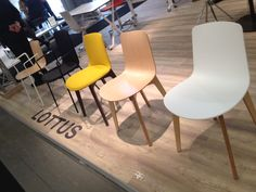 Lottus chairs from Enea