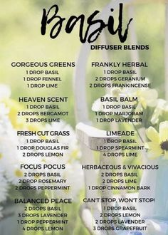 calming oils for dogs doterra best essential oil combination for anxiety Helichrysum Essential Oil, Basil Essential Oil, Doterra Essential Oils, Young Living Essential Oils, Doterra Blends, Healing Oils, Aromatherapy Oils, Melaleuca, Essential Oil Diffuser Blends