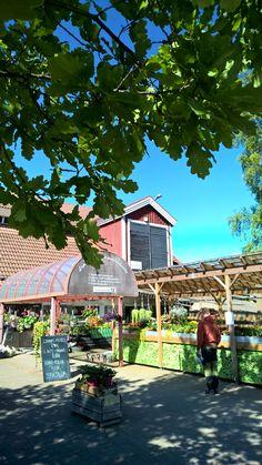 Lepaan viinitila ja puutarhamuseo   Lepaa wineyard  and garden museum