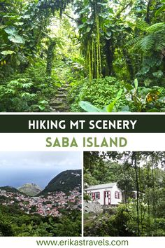 Guide to hiking Mt Scenery in Saba as a day trip from St Maarten Travel Guides, Travel Tips, Green Scenery, Beautiful Islands, Day Trip, Trekking, Caribbean, North America, Surfing