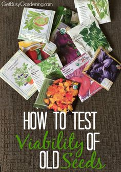 Many seeds can be stored for several years, but the viability of seeds will go down over time. It's a good idea to test the viability of old seeds before you sow them to make sure it's worth your time and effort, by performing a simple seed viability test. Here's How To Test Viability Of Old Seeds   GetBusyGardening.com