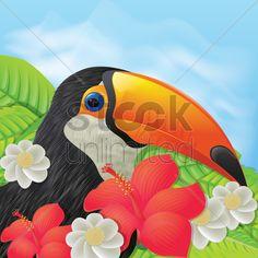 toco toucan Stock Vector