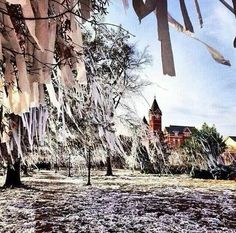 72 Best Auburn Event Decor Images In 2018 Wedding Ideas