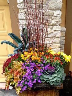 http://www.botanicalblitz.com/portfolio/fall/