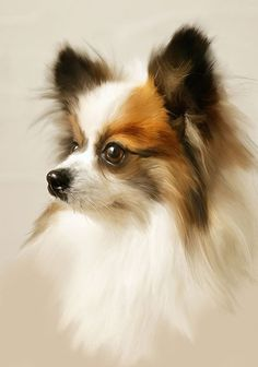 Dog Portrait on eBay by???