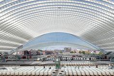 Estação de Alta Velocidade de Liège-Guillemins - Santiago Calatrava © João Morgado