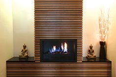 Gas fireplace Constant heat Never have to buy or chop firewood No ashes Save atleast 25% of your electricity bill turned on or off with a flip switch Warmer than traditional fireplace