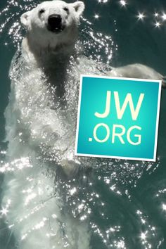 Jw.org. so cute