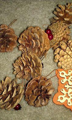 last years ornaments. pinecones.