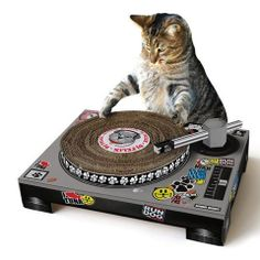 Pet Cat DJ Scratching Deck (by Suck UK), best cat scratching post, dj decks cat scratching post Supply Store/Shop *** Check out this great image : Cat scratching post Crazy Cat Lady, Crazy Cats, Hate Cats, Cool Cats, Dj Pult, Dj Kitty, Baby Kitty, Kitty Cats, Cat Playhouse