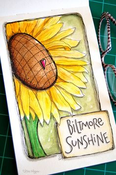 elvie studio: biltmore sunshine